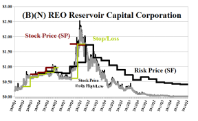 (B)(N) REO Reservoir Capital Corporation