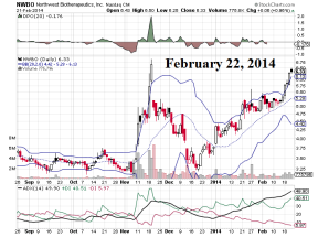 NWBO Northwest Biotherapeutics Incorporated - February 2014 Courtesy: StockCharts