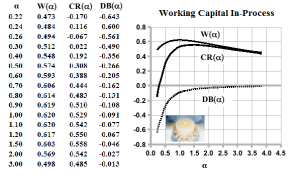 Figure 4: The Working Capital In-Process