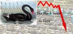 The Black Swan...Is Here