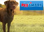Courtesy: PetSmart Incorporated