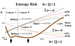 Figure 7.2: Entropy Risk