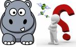 Hippo & Sloth LLC
