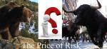 The Bull Run & Bear Embrace