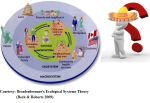 Figure 1: Bronfenbrenner's Ecological Systems Theory (Berk & Roberts 2009)